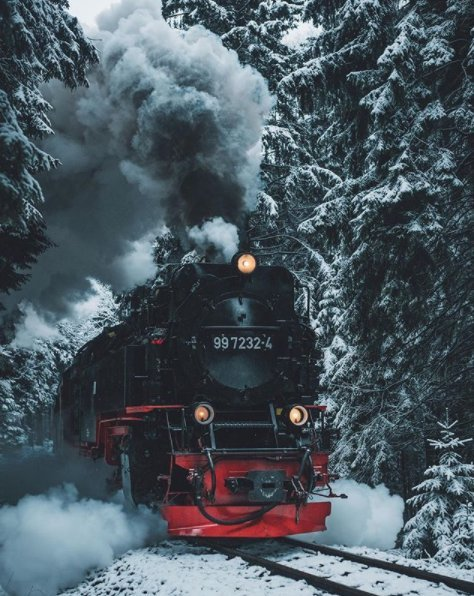 If we jump on, will we be taken to Hogwarts!  Leo Thomas at Harz National Park, Germany
