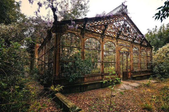 Abandoned Victorian greenhouse gets overgrown