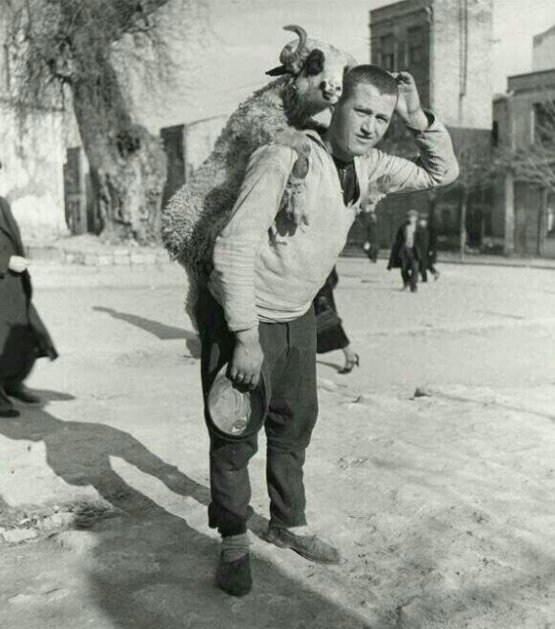 A man with a sheep on his back at a sheep market in Turkey, 1930s