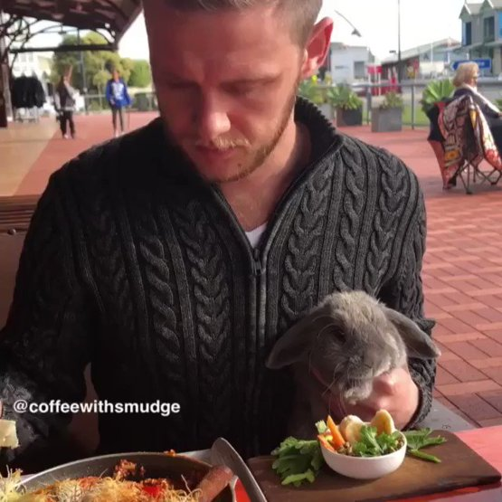 Just a man and his bun' enjoying breakfast together ????????????????