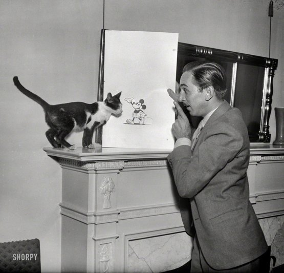 Walt Disney explains Mickey Mouse to a cat, 1931.