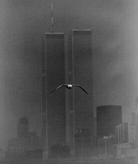 Beautiful photo of the Twin Towers in 1979