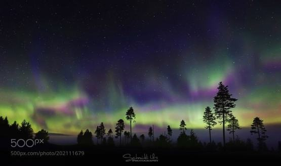 Northern Lights in Lapland photography by Urs Schmidli