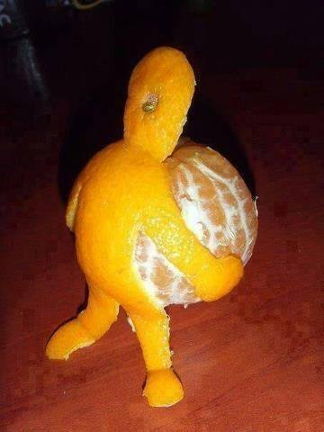 Sometimes you just have to pick yourself up and carry on.
