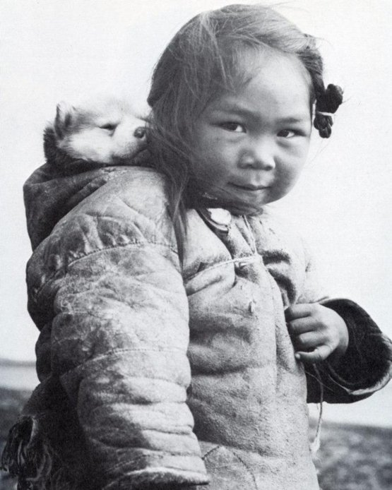 Little inuit girl and her puppy, 1949. Photograph by Richard Harrington.