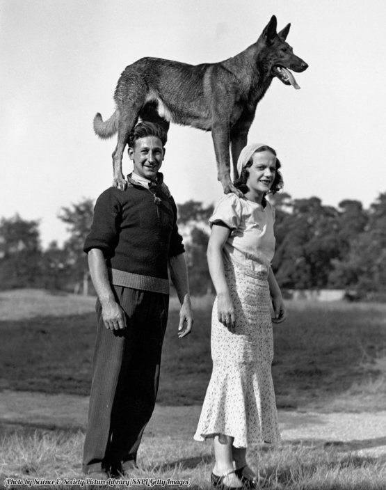 Couple with a dog standing on their shoulders, United Kingdom, circa 1910s.