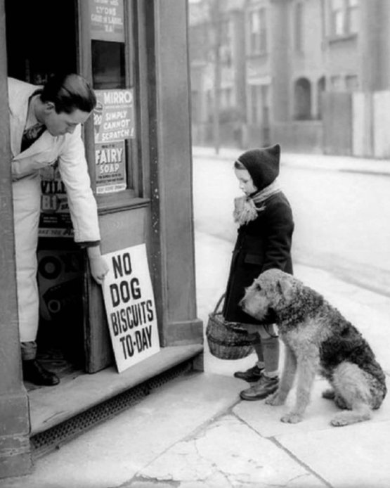 No Dog Biscuits Today, 1939
