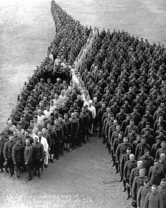 Soldiers paying tribute to 8 million horses, donkeys and mules that died during World War I, 1915