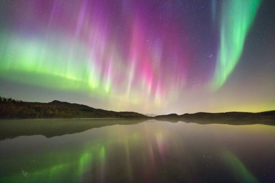 One of the crazy nights on Senja island, Norway  #staystrong
