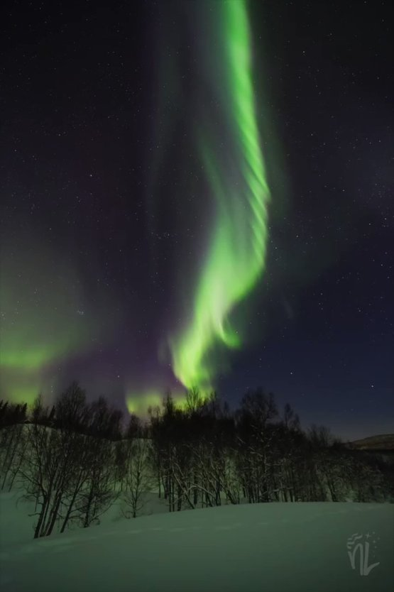 When the aurora dances and explodes over your head