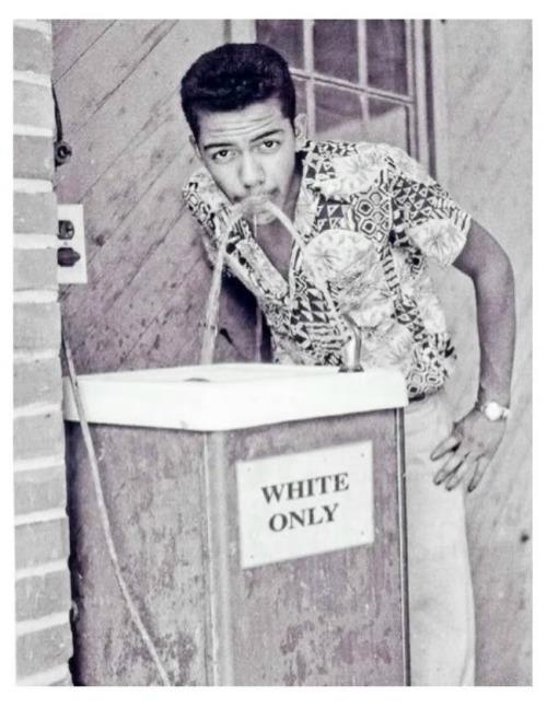 """Black man drinking at """"white only"""" fountain, circa 1964. Photograph by Cecil Williams."""