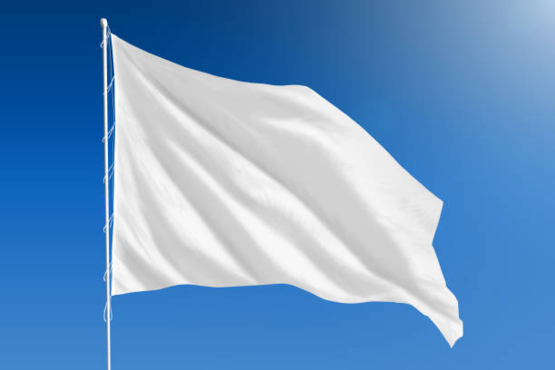 The only flag of the confederacy that matters.