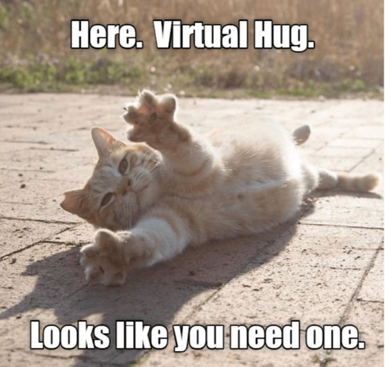 Send your friends a big virtual hug today because it's #NationalFriendshipDay!
