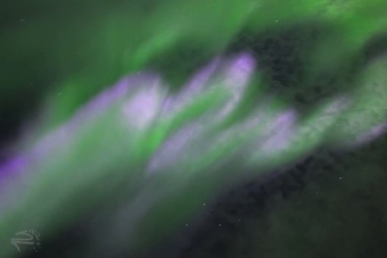 When the #aurora goes NUTS!