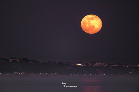 Last night's #SnowMoon rising at Southbourne